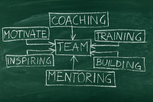 Teamwork durch Coachings lernen